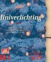 Kerstlampjes 120 stuks